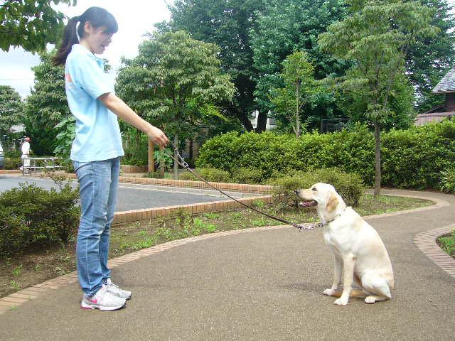http://www.seed.co.jp/blog/eyemate/%E5%9F%BA%E7%A4%8E%E8%A8%93%E7%B7%B45.JPG