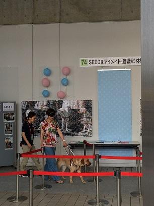 http://www.seed.co.jp/blog/eyemate/%E5%A4%A7%E4%BA%BA%E6%AD%A9%E8%A1%8C%E4%BD%93%E9%A8%93.JPG