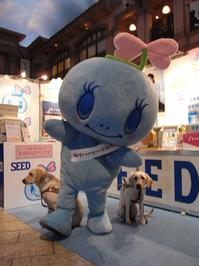 やさシード&犬.JPGのサムネイル画像