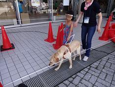 お子さん歩行体験写真.JPG