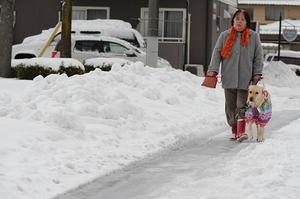 雪道を歩いている写真.JPG